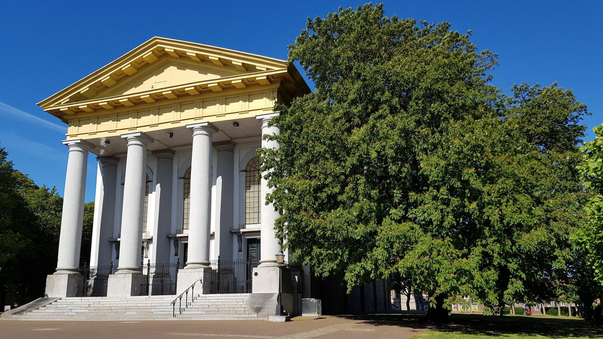 Rechts naast een monumentale entree met zuilen staat een groene kastanjeboom.