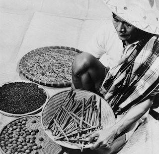 collectie tropenmuseum - De specerijen nootmuskaat kaneel kruidnagel en foelie