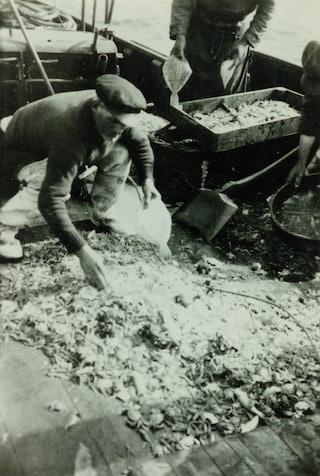 Een visser zit voorovergebogen aan dek en sorteert klein grut van de vangst, waaronder krabben.