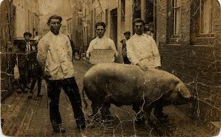 Drie mannen met een groot varken staan in een straat.